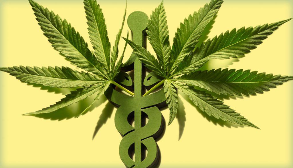Marijuana weed